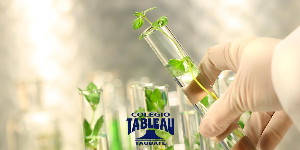 A química em benefício do meio ambiente!